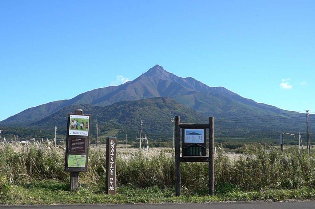 富士野園地